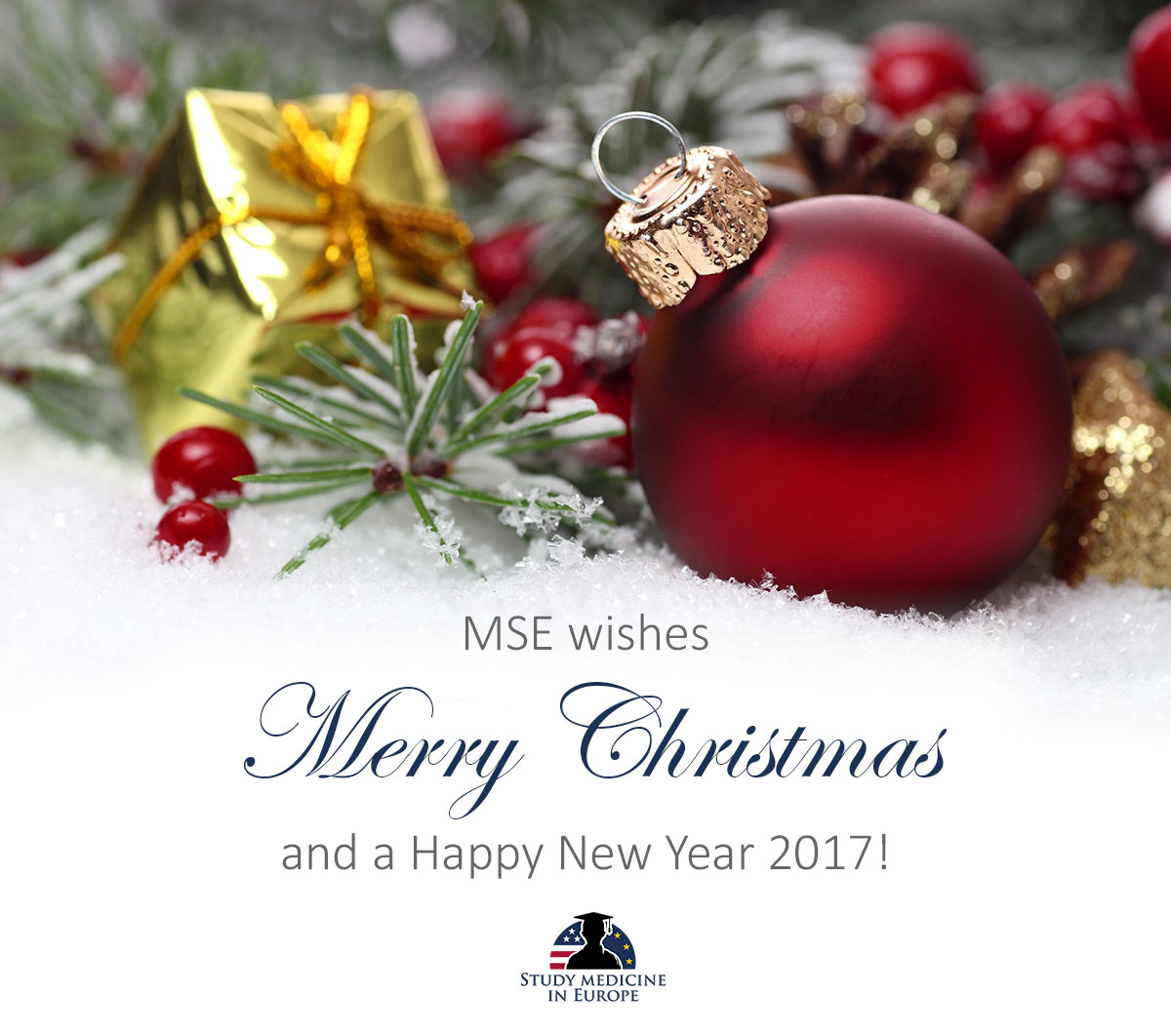 MSE Merry Christmas